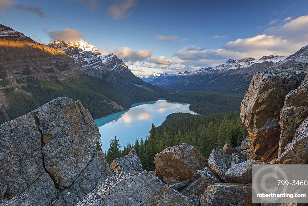 Early morning vista of Peyto Lake in the Canadian Rockies, Banff National Park, UNESCO World Heritage Site, Alberta, Canada, North America