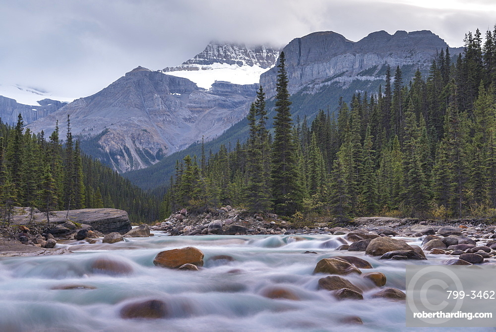Surrounded by forest and mountains the fast flowing Mistaya River runs alongside the Icefields Parkway in the Canadian Rockies, Alberta, Canada, North America
