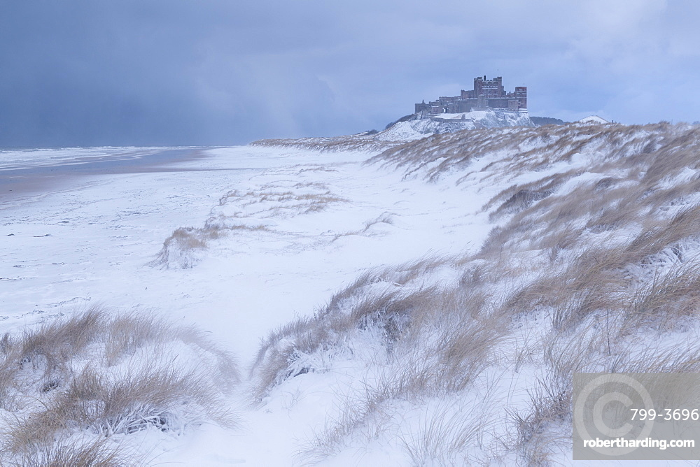 Snow Covered Beach And Sand Dunes By Bamburgh Castle In Winter Northumberland England