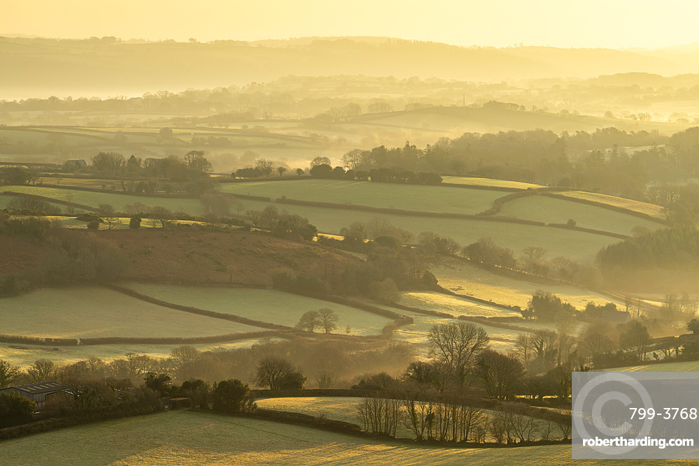 Rolling countryside near Moretonhampstead at dawn, Dartmoor National Park, Devon, England. Winter (January) 2019.