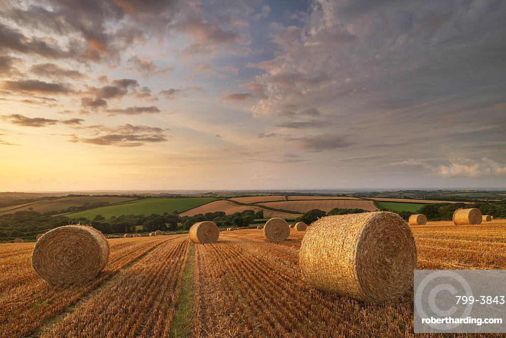 Straw Bales at sunset in rural Devon, Livaton, Devon, England. Summer (July) 2019.