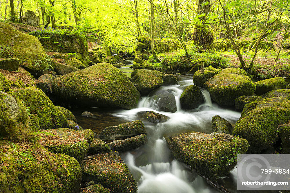 River Kennall flowing between moss covered boulders at Kennall Vale in Ponsonooth, Cornwall, England, United Kingdom, Europe