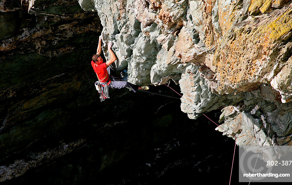 A rock climber in action on an extreme route on the cliffs of Gogarth, Anglesey, Wales, United Kingdom, Europe