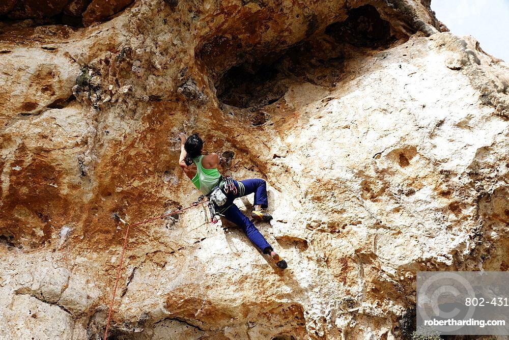 Rock climber in action on the cliffs of Malta, Mediterranean, Europe
