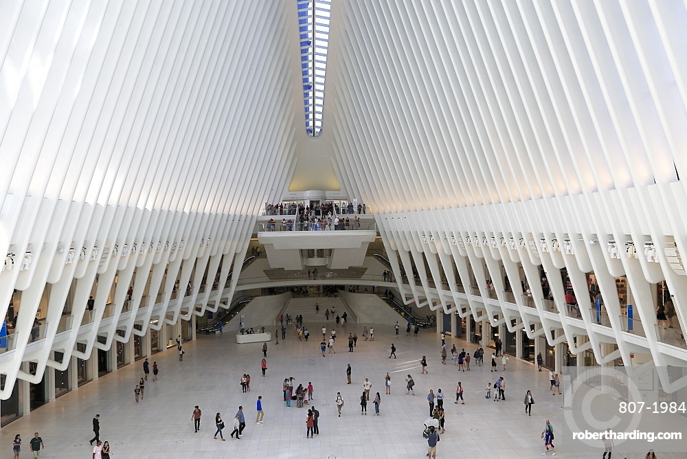 Oculus, architect Santiago Calatrava, World Trade Center Transportation Hub, Financial District, Manhattan, New York City, United States of America, North America