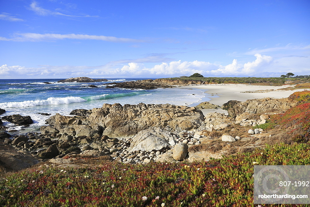 Rocky coastline, 17 Mile Drive, Pebble Beach, Monterey Peninsula, Pacific Ocean, California, United States of America, North America