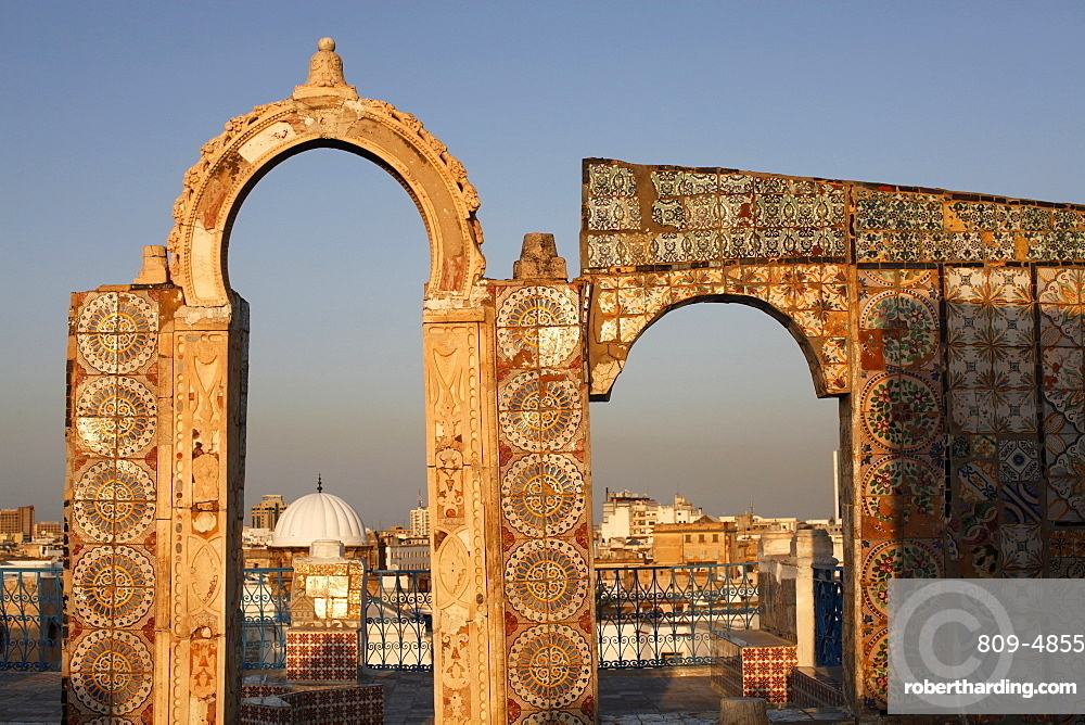 Tunis city seen from a Medina rooftop, Tunis, Tunisia, North Africa, Africa