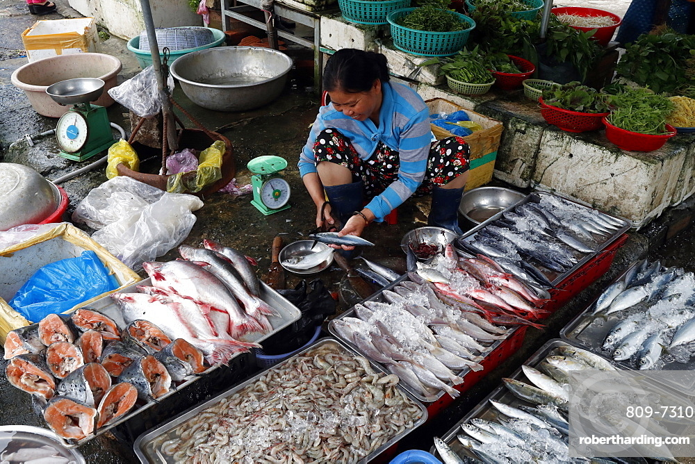 Kon Tum market, woman selling fish, Vietnam, Indochina, Southeast Asia, Asia
