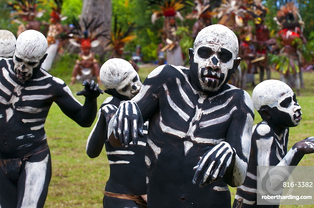 Face and body painted local tribes celebrating the traditional Sing Sing in Paya, Papua New Guinea, Melanesia, Pacific