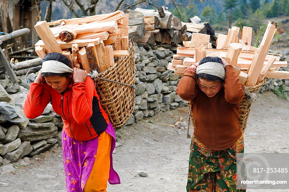 women carrying firewood in the Annapurna region of Nepal