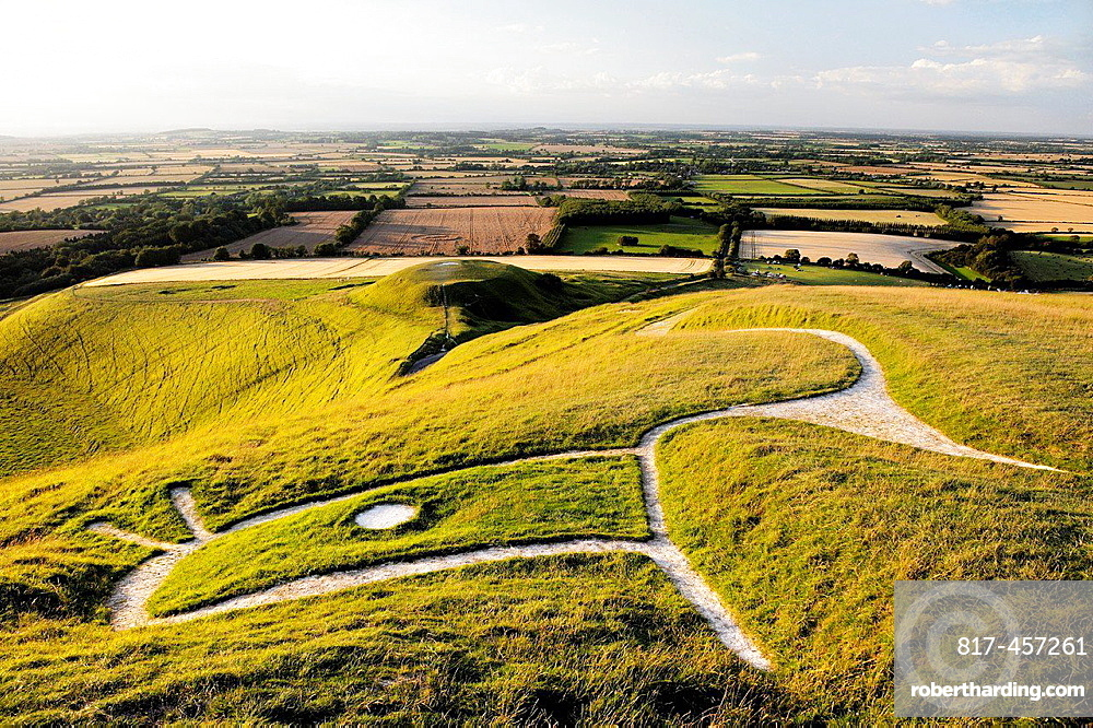 Uffington White Horse. Prehistoric Bronze Age chalk hill figure Oxfordshire, England. Close up over head, eye, ears and neck.