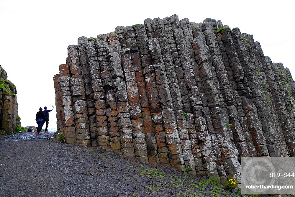Giant's Causeway, UNESCO World Heritage Site, Bushmills, County Antrim, on the north coast of Northern Ireland, Ulster, Northern Ireland, United Kingdom, Europe