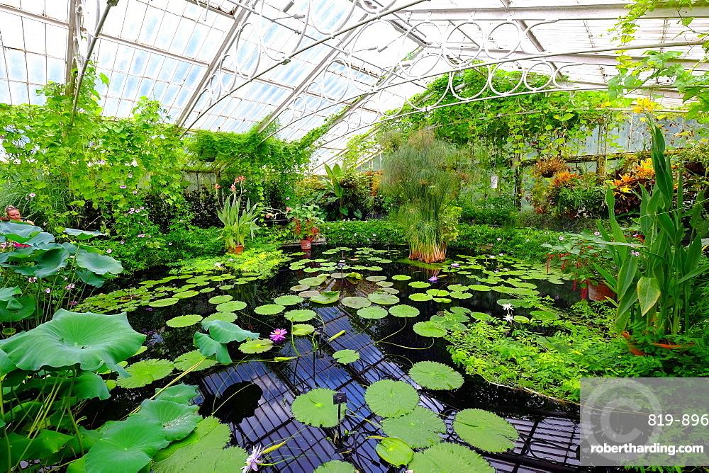Waterlily House at Kew Gardens, UNESCO World Heritage Site, London, England, United Kingdom, Europe