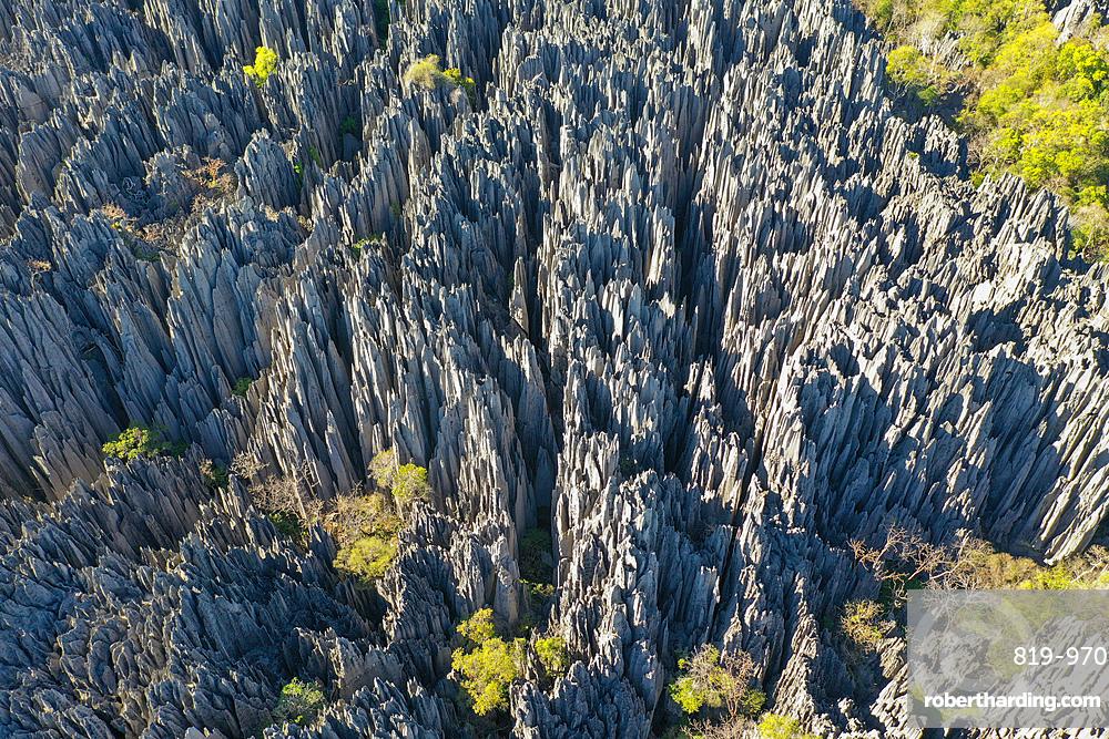 The karst limestone formation at Parc National des Tsingy de Bemaraha, Tsiribihina region, Madagascar