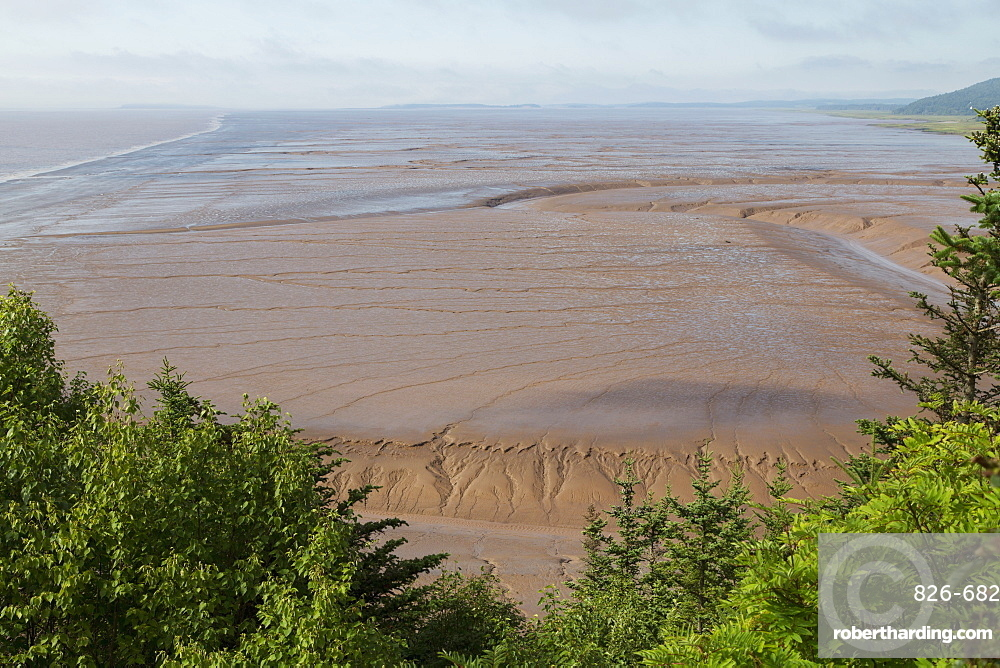 Mudflats, seen from Hopewell Rocks, on the Bay of Fundy, the location of the highest tides in the world, New Brunswick, Canada