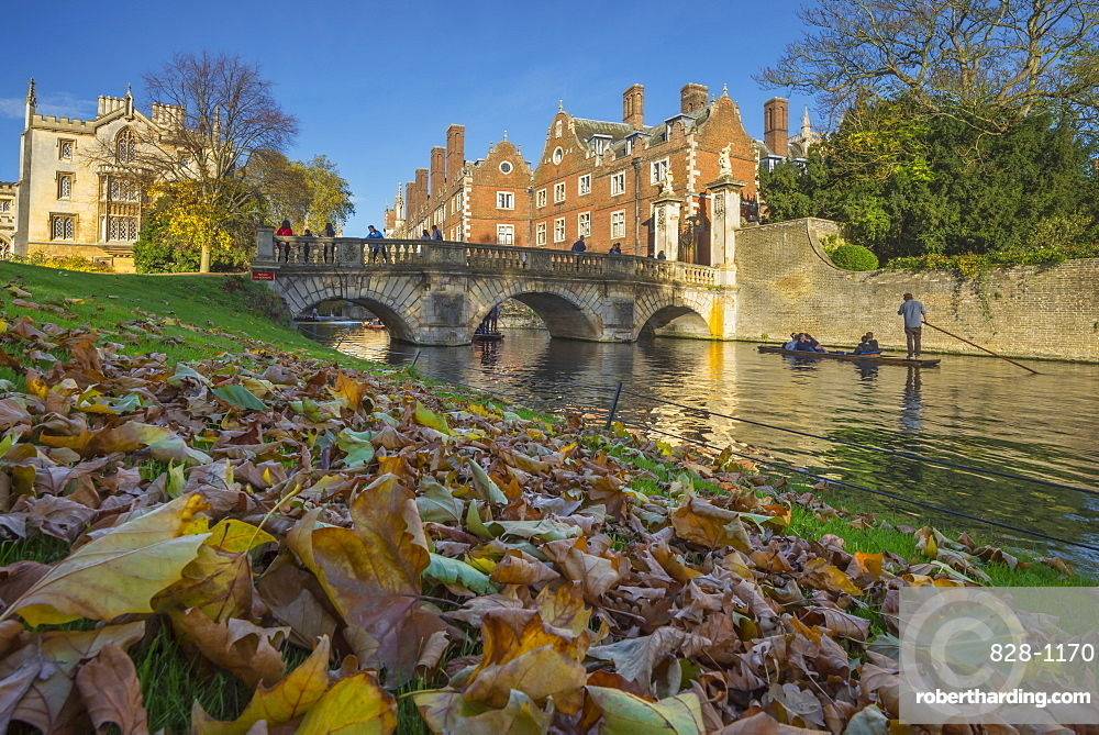 River Cam, St. John's College, Cambridge, Cambridgeshire, England, United Kingdom, Europe
