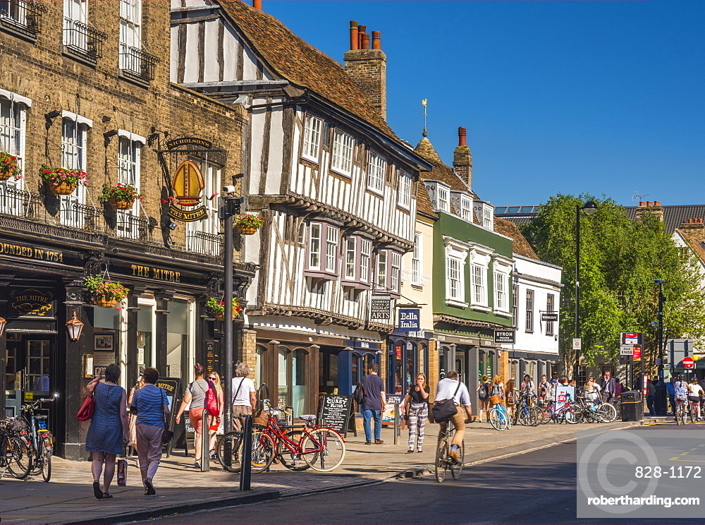 Bridge Street, Cambridge, Cambridgeshire, England, United Kingdom, Europe