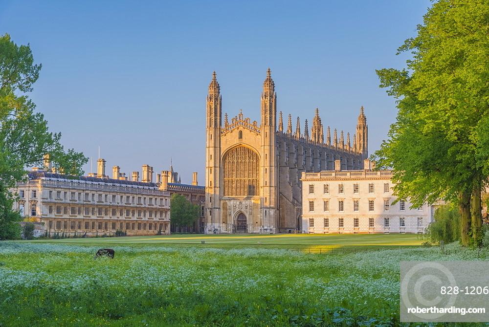 UK, England, Cambridge, The Backs, King's College, King's College Chapel