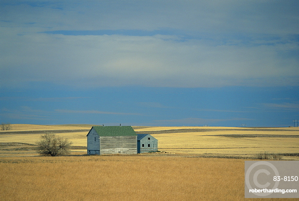 Farm buildings on the prairie, North Dakota, USA *** Local Caption ***
