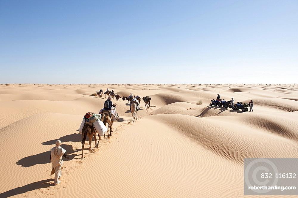Sustainable tourism, camel trekking, camels, dromedaries (Camelus dromedarius), caravan encountering a group of quads, sand dunes, Sahara desert between Douz and Ksar Ghilane, Southern Tunisia, Tunisia, Maghreb, North Africa, Africa