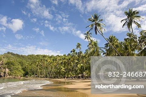 Playa Medina, beach, Venezuela, Caribbean, South America