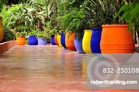 Jardin Majorelle Marrakech Morocco Africa Stock Photo