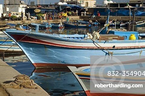 Fish market in Tripoli, Libya