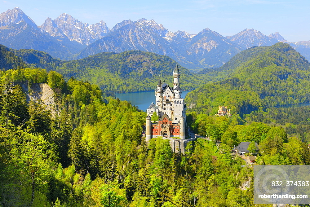 Schloss Neuschwanstein Castle near Fuessen, Allgaeu, Bavaria, Germany, Europe