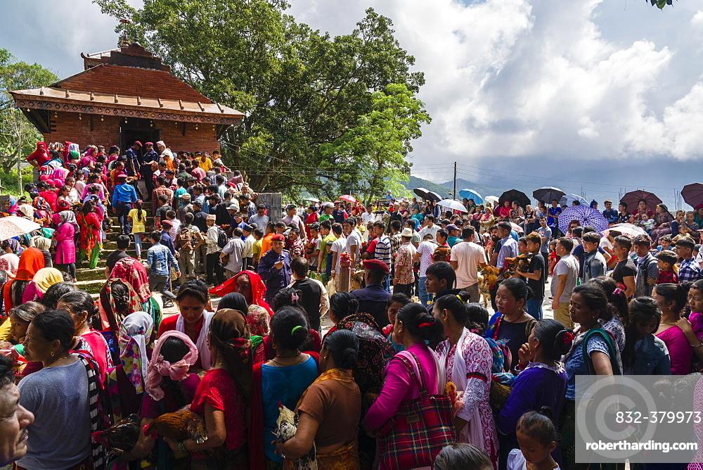 Local people waiting with roosters for sacrifice, The Khadga Devi Mandir Temple, Darsain Hindu Festival, Bandipur, Tanahun, Nepal, Asia