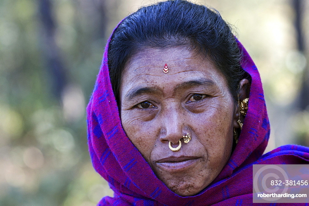 Nepalese woman with earrings and nose piercing, portrait, with Nargakot, Nepal, Asia