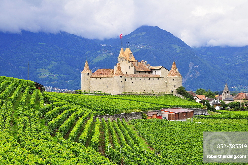 Chateau d''Aigle or Aigle Castle, surrounded by vineyards, Aigle, Canton of Vaud, Switzerland, Europe