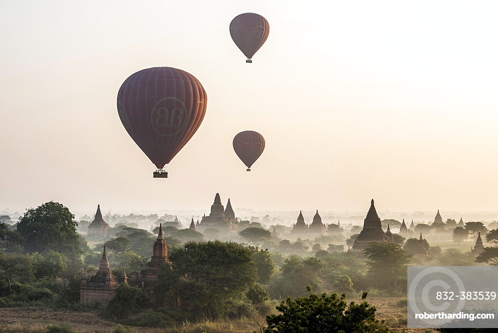 Hot air balloons over the landscape in the early morning fog, temples, stupas, pagodas, temple complex, Plateau of Bagan, Mandalay Division, Burma or Myanmar