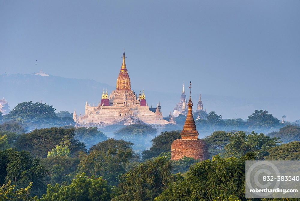 Ananda Temple in the morning fog, blue hour, gilded tower structure or Shikhara, stupas, pagodas, temple complex, Plateau of Bagan, Mandalay Division, Burma or Myanmar