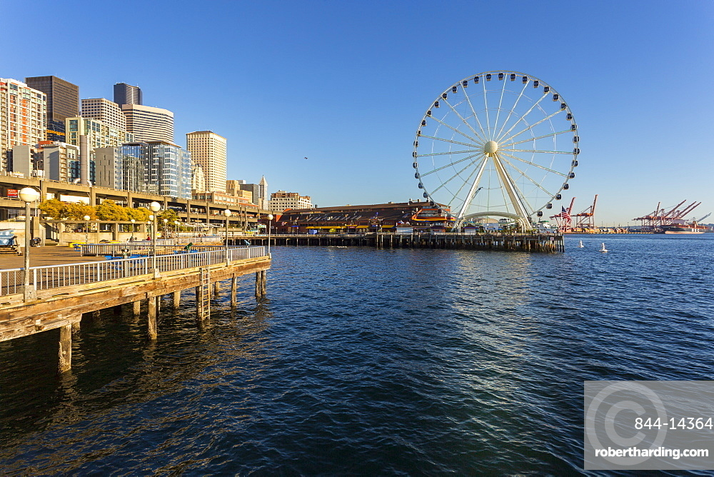 Seattle Great wheel on Pier 58 during the golden hour before sunset, Alaskan Way, Downtown, Seattle, Washington, USA, North America