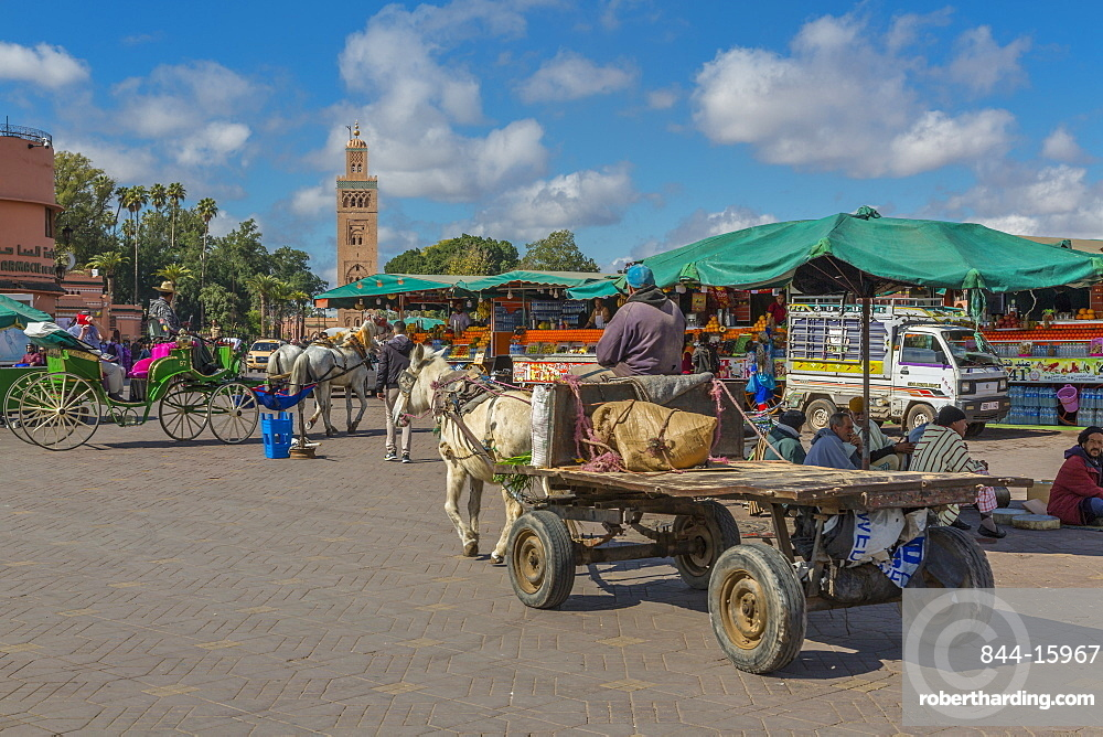 Horse and cart on Jemaa el Fna (Djemaa el Fnaa) Square, UNESCO World Heritage Site and Koutoubia Mosque visible, Marrakesh (Marrakech), Morocco, North Africa, Africa