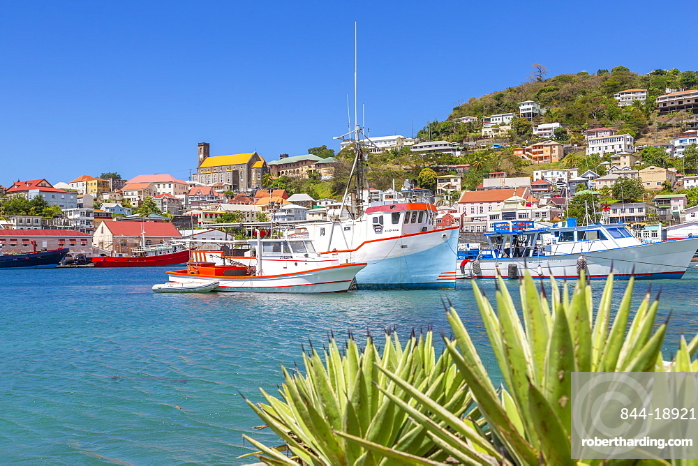 View over the Carnarge of St George's, Grenada, Windward Islands, West Indies, Caribbean, Central America