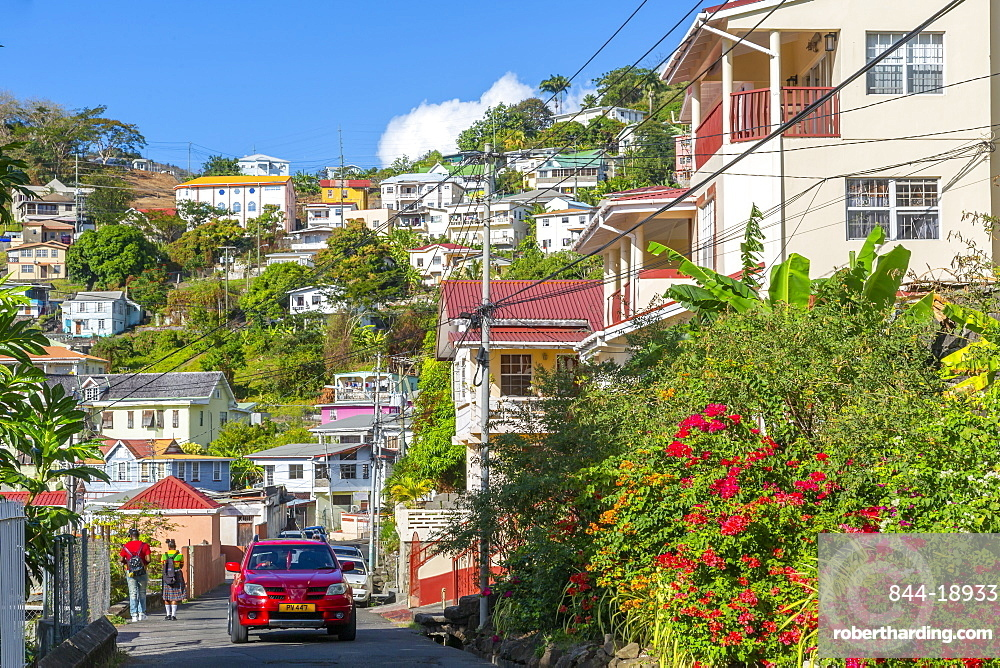 View of colourful houses that overlook the Carnarge of St George's, Grenada, Windward Islands, West Indies, Caribbean, Central America