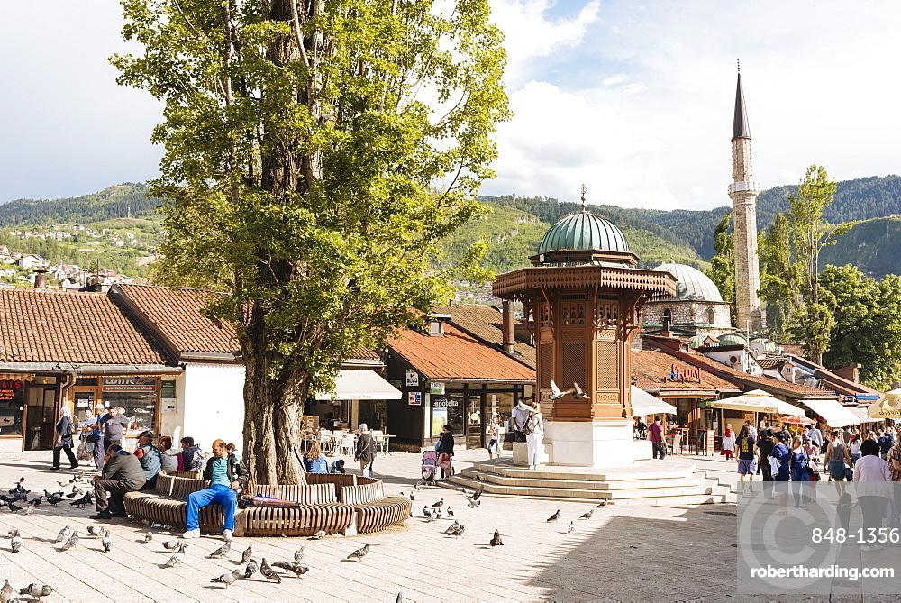 Pigeon Square, Old Town, Sarajevo, Bosnia and Hercegovina, Europe