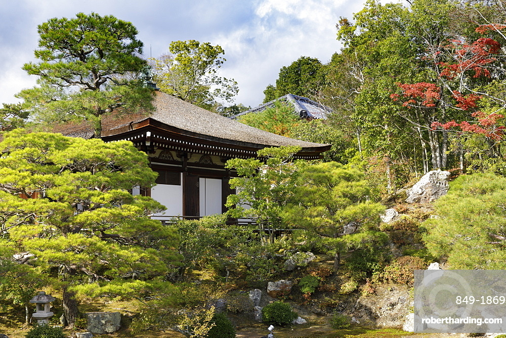 Autumn color in Ninna-ji Temple, founded in 888, UNESCO World Heritage Site, Kyoto, Japan, Asia