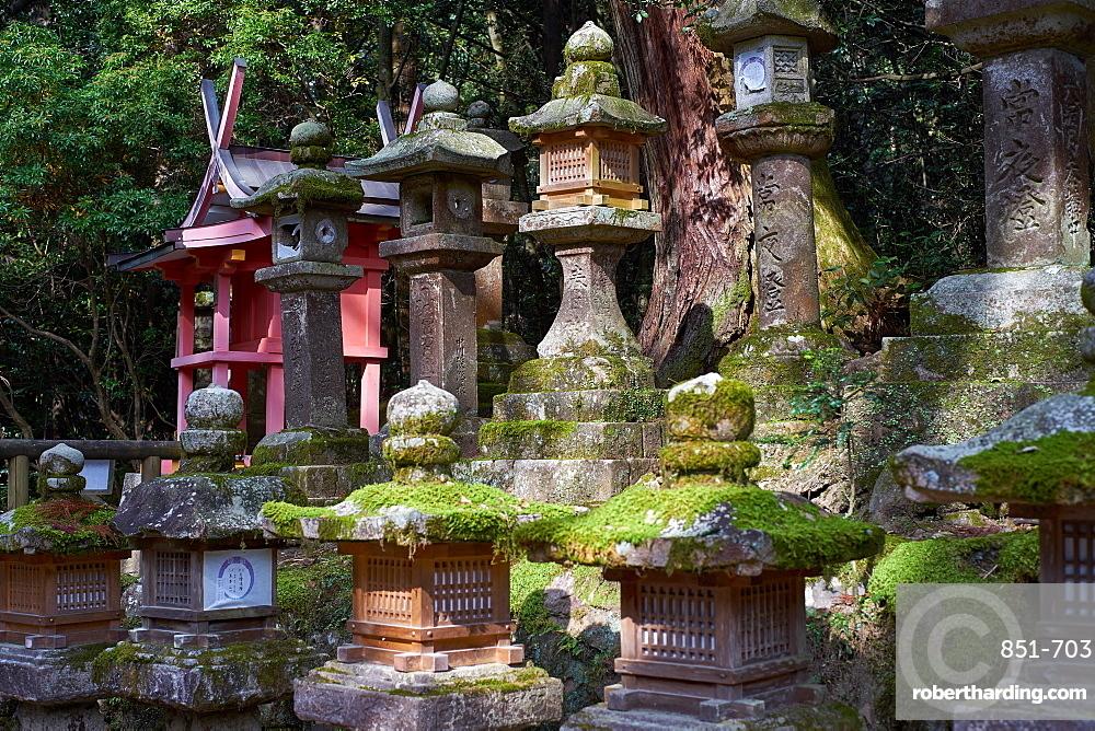 Stone lanterns at Kasuga Wakamiya Shrine in Nara Park, Japan.