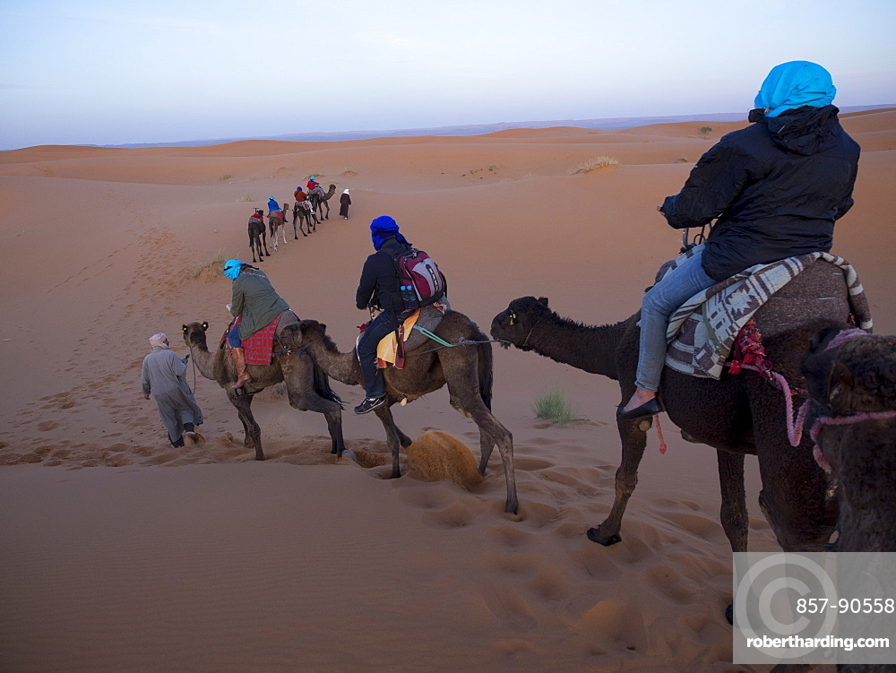 Tourists riding camel at desert in Erg Chebbi, Morocco
