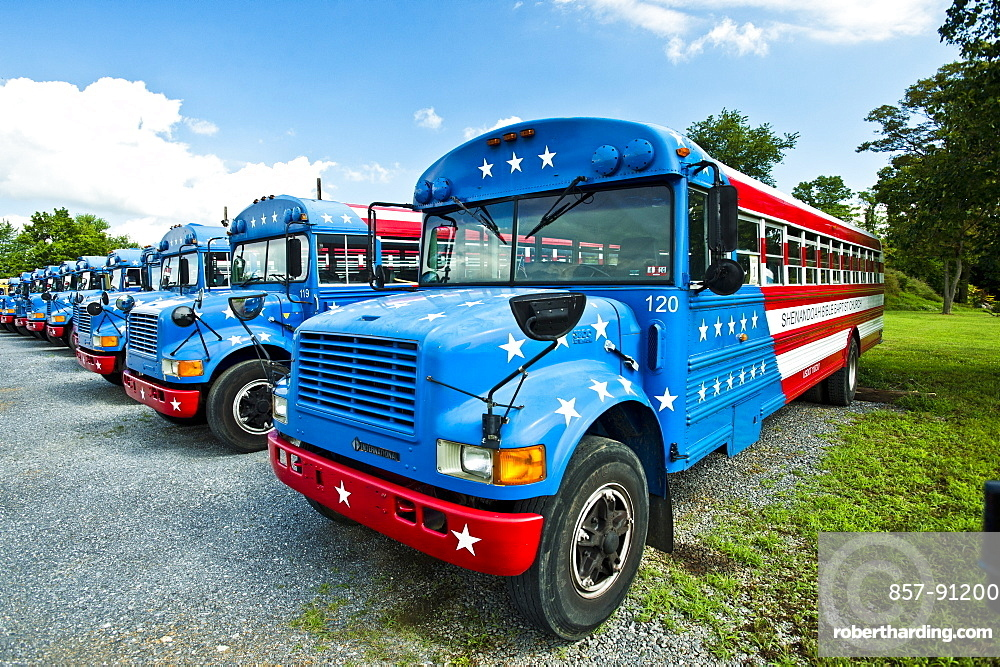Buses painted like the America Flag.