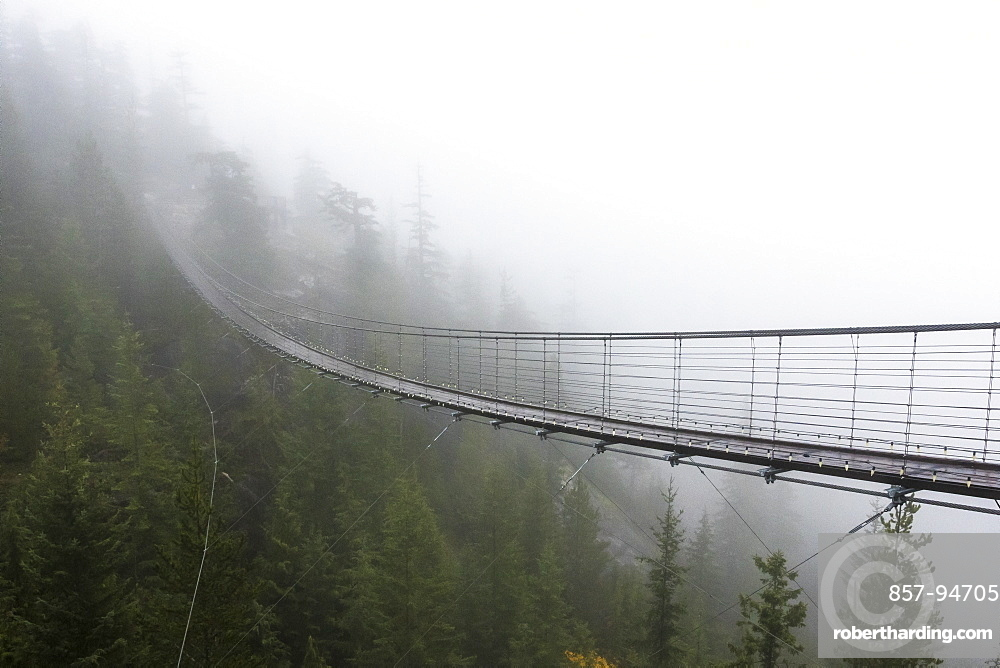 A Misty suspension bridge, Squamish, British Columbia.