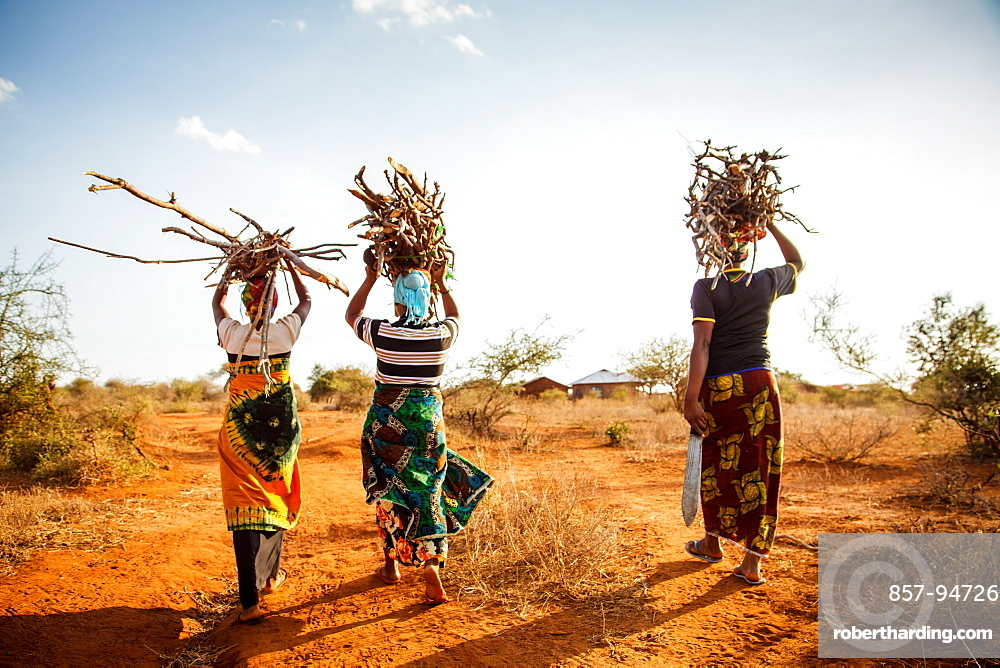 """Zainabu Ramadhani, 19, (yellow and red patterned skirt) her mother Fatma Mziray, age 38, (blue head dress) and Fatma's sister-in-law Zaitun Hamad, 18, (orange wrap and white top) walk home after gathering firewood near Fatma's home in Mforo. Mforo is near Moshi, Tanzania.   Fatma Mziray is a Solar Sister entrepreneur who sells both clean cookstoves and solar lanterns. Fatma heard about the cookstoves from a Solar Sister development associate and decided to try one out. The smoke from cooking on her traditional wood stove using firewood was causing her to have a lot of heath problems, her lungs congested her eyes stinging and her doctor told her that she had to stop cooking that way. Some days she felt so bad she couldn't go in to cook. Fatma said, """"Cooking for a family, preparing breakfast, lunch and dinner I used to gather a large load of wood every day to use. Now with the new cook stove the same load of wood can last up to three weeks of cooking.   """"With the extra time I can develop my business. I also have more time for the family. I can monitor my children's studies. All of this makes for a happier family and a better relationship with my husband. Since using the clean cookstove no one has been sick or gone to the hospital due to flu.""""  Fatma sees herself helping her community because she no longer sees the people that she has sold cookstoves have red eyes, coughing or sick like they used to be. She has been able to help with the school fees for her children, purchase items for the home and a cow.  """"What makes me wake up early every morning and take my cookstoves and go to my business is to be able to take my family to school as well as to get food and other family needs."""""""