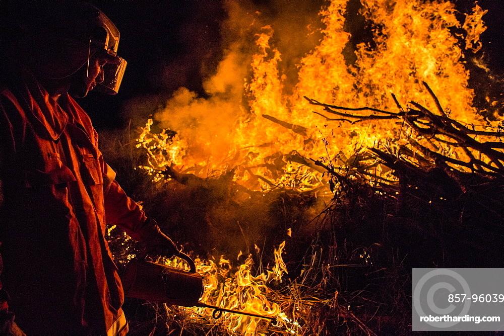 View of single firefighter using?driptorch?during hazard mitigation burn, Guanaba, Queensland, Australia