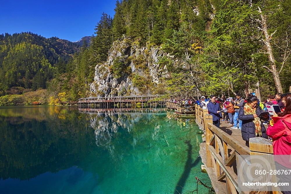 Panda lake, Jiuzhaigou valley, Sichuan, China