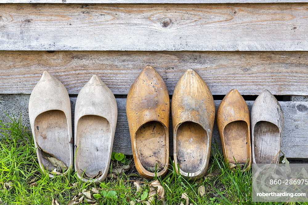 Decorative wooden clogs in a garden