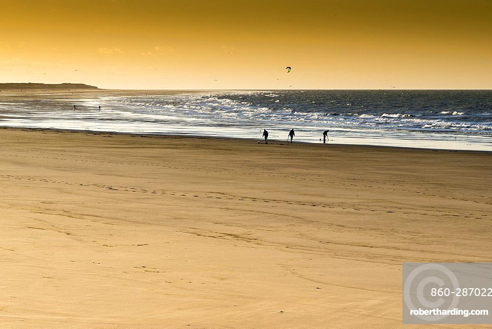 Fishermen looking for worms on Calais beach at sunset, winter, Pas de Calais, France