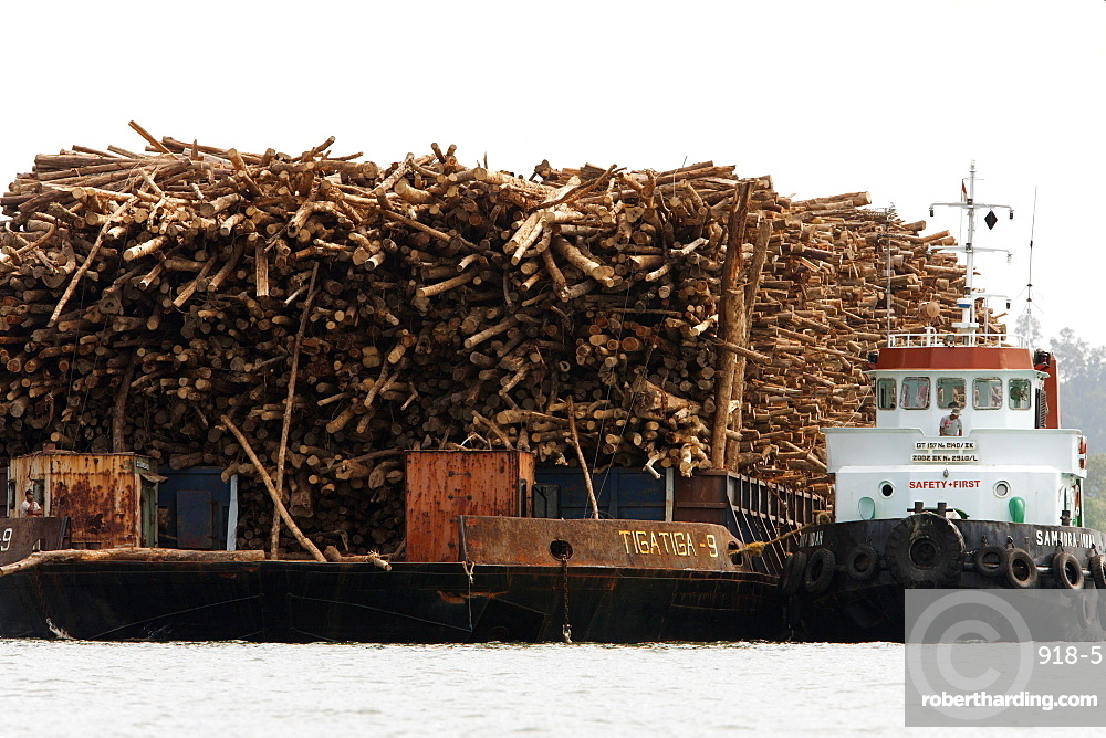 Cargo of acacia wood, an introduced species, Balikpapan Bay, East Kalimantan, Borneo, Indonesia, Southeast Asia, Asia