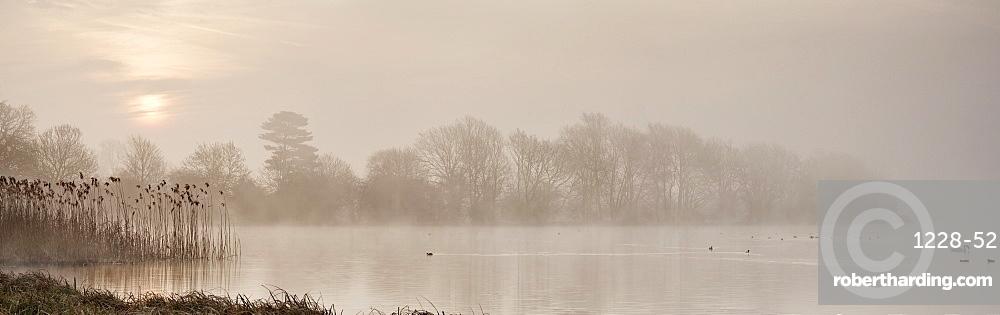 Sunrise at The Great Lake, Castle Howard, North Yorkshire, Yorkshire, England, United Kingdom, Europe